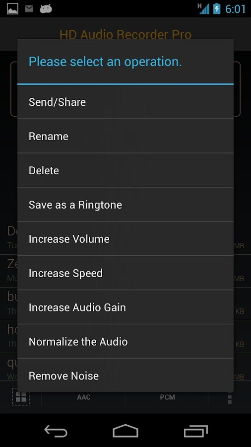 HD Audio Recorder - screenshot