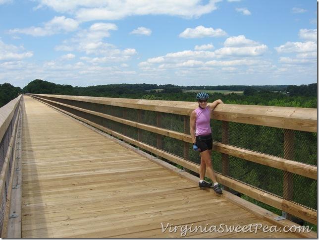 High Bridge in Farmville5