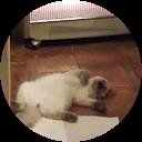 Image Google de martine bertet rous