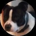 Image Google de nicolas joyaux