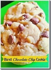 drool worthy chocolate chip cookies_thumb[8]