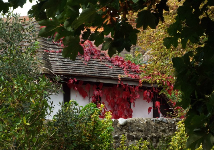 autumnal house
