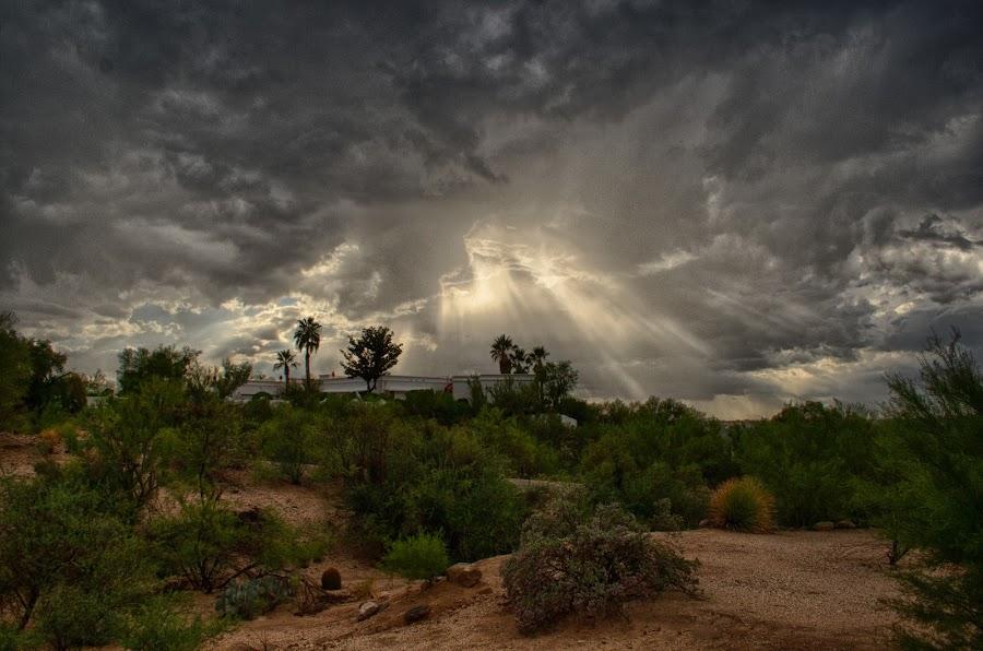 Monsoon season in Tucson by Charlie Alolkoy - Landscapes Deserts ( desert, sky, monsoon, arizona, tucson, cloud, weather, storm, tucons )