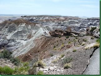 Painted Desert & Petrified Forest 164