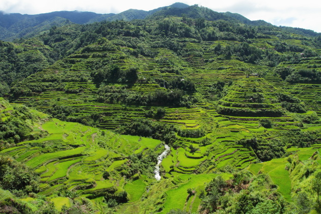 Banaue Rice Terraces of Philippines - a sight to behold