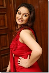 Sonia_Agarwal_stylish_photo