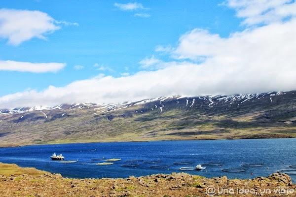 fiordos islandia (3).jpg