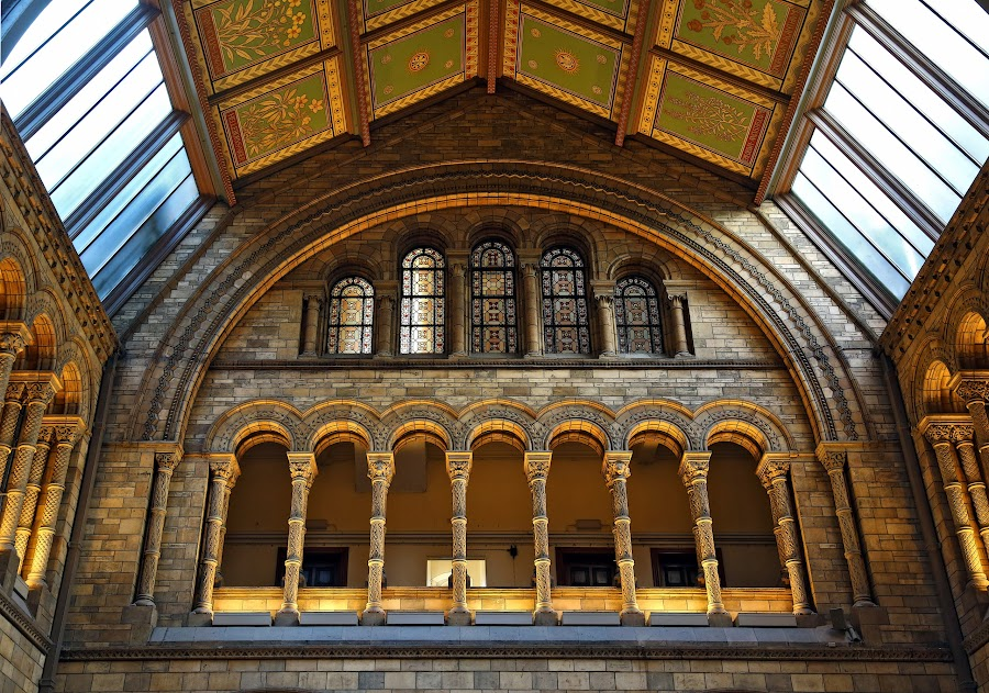 vitrage by Almas Bavcic - Buildings & Architecture Architectural Detail