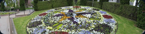 linneo flower clock1