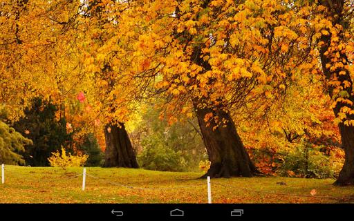 Autumn Wallpaper screenshots 16