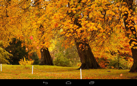 Autumn Wallpaper screenshot 15
