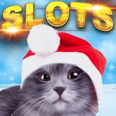 Christmas Cash Cats FREE Slots