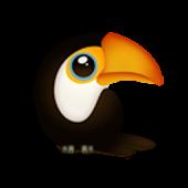Baby English (Bird)
