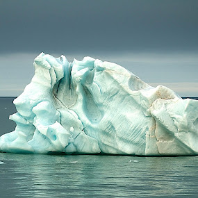 Alone in the Arctic by Marco Parenti - Nature Up Close Other Natural Objects ( nature, ice, arctic, landscape )