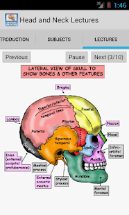 Head and Neck Lectures - screenshot thumbnail