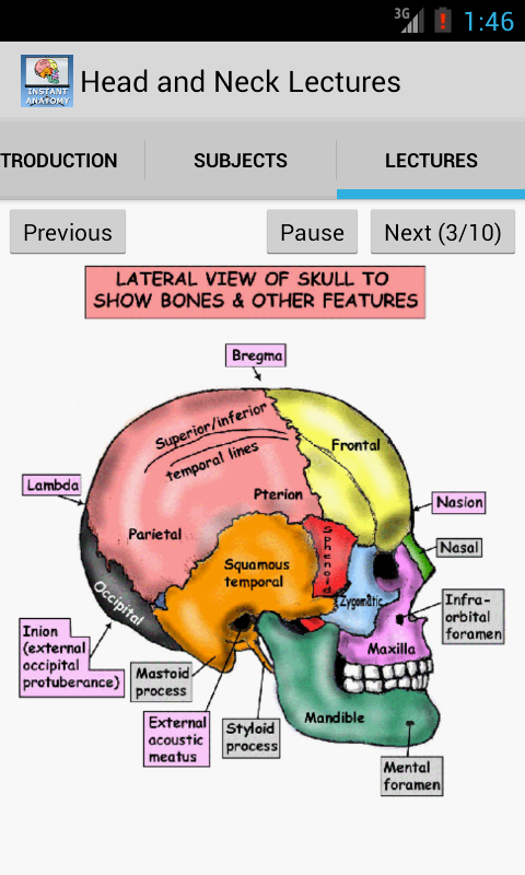 Head and Neck Lectures - screenshot