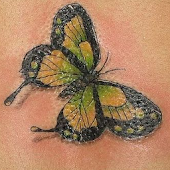 Tattoo Butterfly Images
