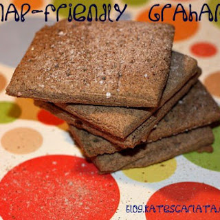 Homemade Graham Crackers (FODMAP friendly)