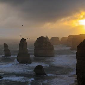 the Twelve Apostles by Desiree DeLeeuw - Landscapes Travel ( rock formations, sunset, australia, ocean, travel,  )