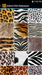 wild animal print wallpaper - photo #42