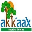 Akkaax icon