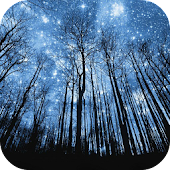 Night Sky Wallpaper
