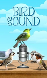 Bird Sound and Picture - screenshot thumbnail