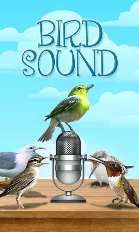 Bird Sound and Picture - screenshot