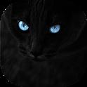Black cats Live Wallpaper icon