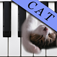 Cat Piano Free icon