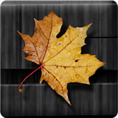 Golden Leaves Live Wallpaper
