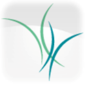 Los Alamitos Medical Center logo