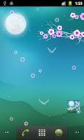 Screenshot of Blooming Night Pro Live WP