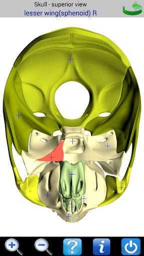 【免費醫療App】Visual Bones-APP點子