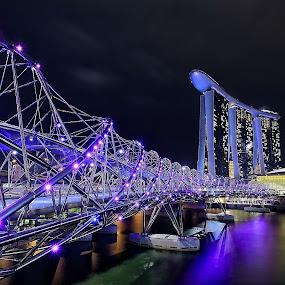 Helix Bridge by Ina Herliana Koswara - City,  Street & Park  Night ( marina bay sands, night, cityscape, bride, singapore, city )
