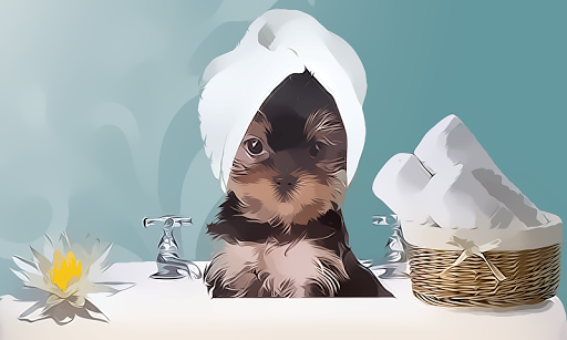 Pet Spa And Salon Games