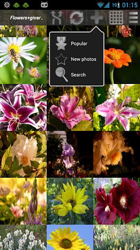 無料摄影AppのSqrMe 正方形のフォトエディタ - 画像や写真のフィルタ|HotApp4Game