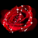 Twinkle Rose Live Wallpaper