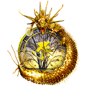 FlashDragon ClockWidget logo