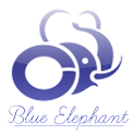 Blue Elephant icon