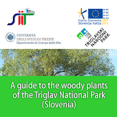 Woody plants of the Triglav NP