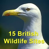15 British Wildlife Sites