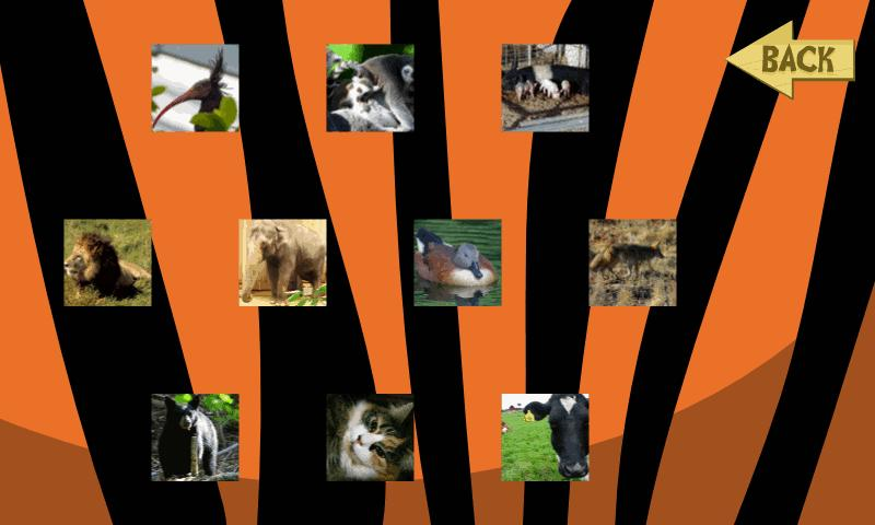 Animal Puzzle Collection - screenshot
