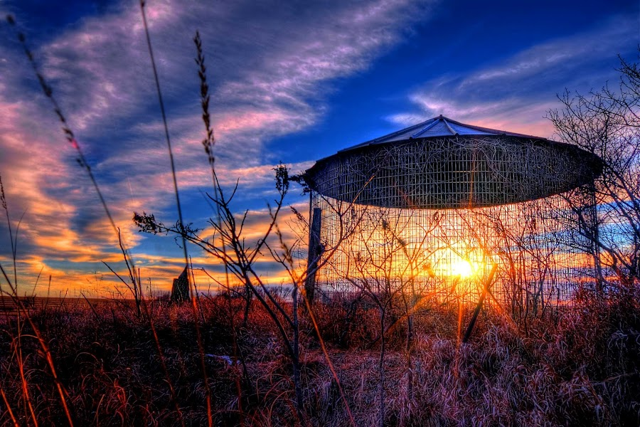 Corn Cage by DE Grabenstein - Landscapes Sunsets & Sunrises