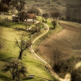 Up to home by Andrei Grososiu - Landscapes Mountains & Hills ( hills, home, poiana marului, romania, road, dusty )