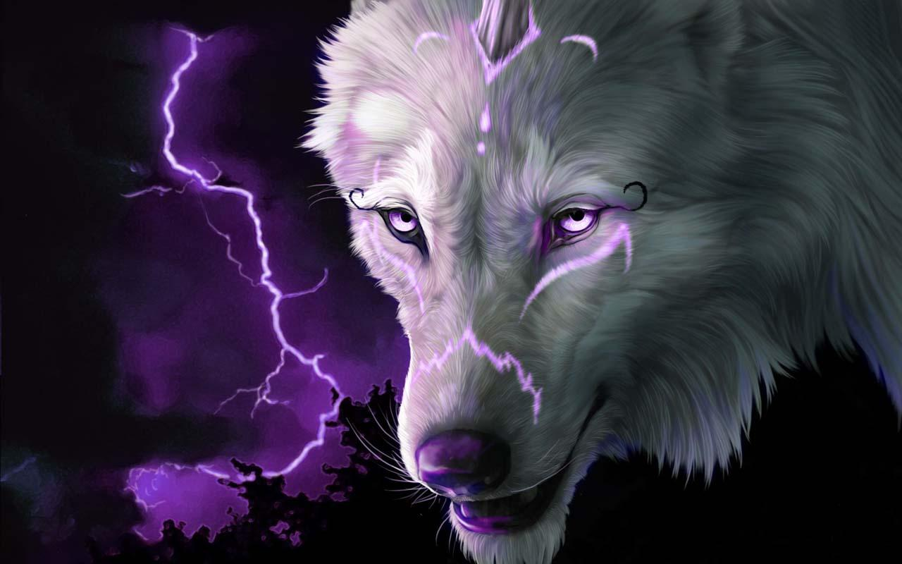Download The Wolf Wallpaper Hd