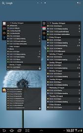 All-in-One Agenda widget Screenshot 12
