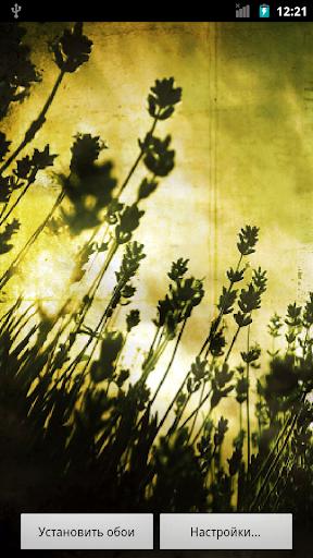 Dark Flowers HQ Live Wallpaper