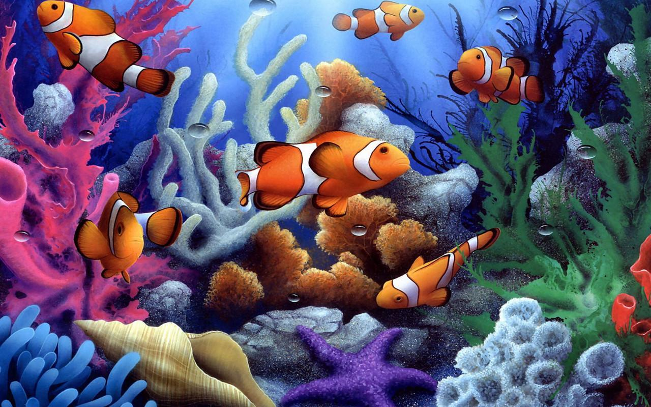 Underwater Jigsaw Puzzles Android Reviews At Android