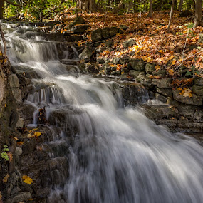 All in a Rush! - Georgetown, Ontario, Canada by Donna Brittain - Landscapes Waterscapes ( georgetown, autumn, waterfall, fall, ontario, scotsdale farm, leaves,  )